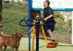 Interrupção nos treinos reduz benefícios de exercícios para o cérebro - Rahel Patrasso/Futura Press