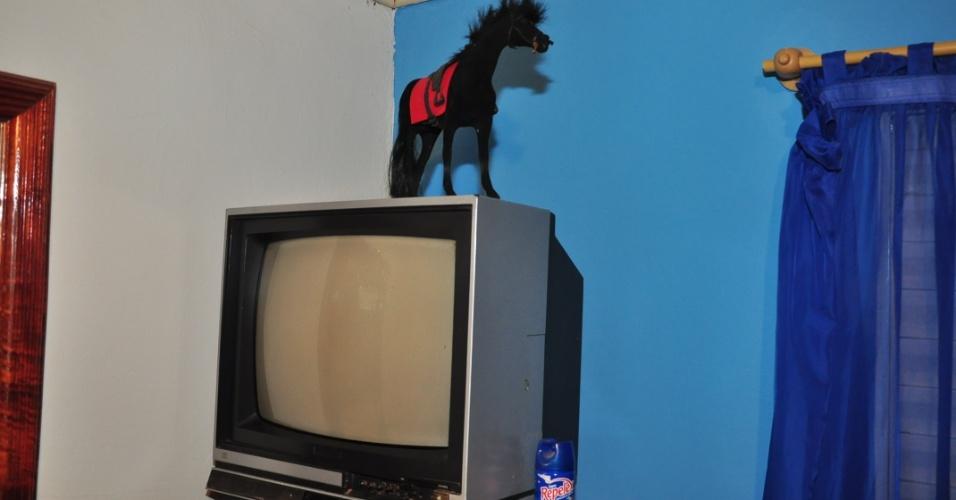 Uma TV e, acima, uma estátua de um cavalo no quarto de Fael em Aral Moreira (1/4/2012)