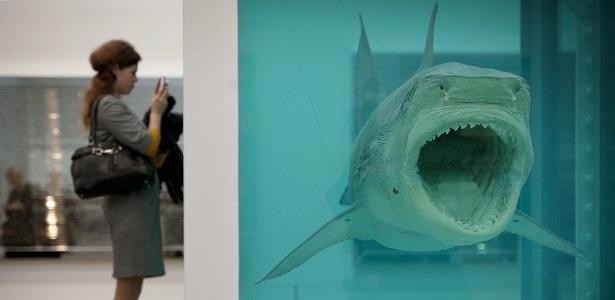 Visitante observa tubarão preservado em formol em exposição na galeria Tate Modern em Londres - Ben Stansall/AFP