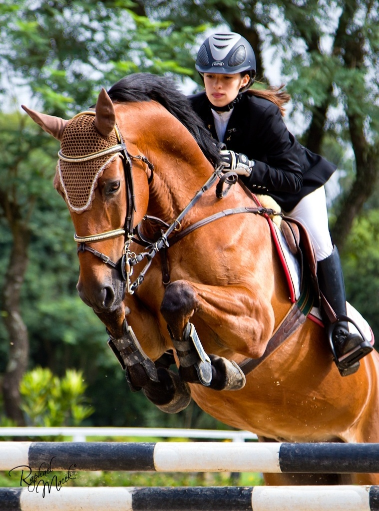 Amazona Bianca Rodrigues conduz seu cavalo durante competição