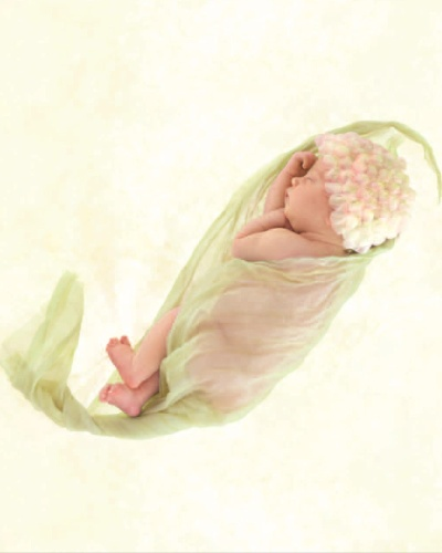 "Foto de Anne Geddes do livro ""Beginnigs"""