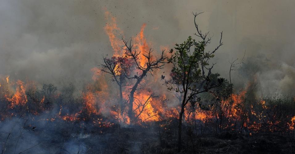 Uma forte queimada atingiu um terreno ao lado do Aeroclube de São José dos Campos, em São Paulo