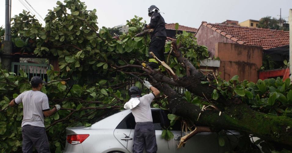 Árvore de grande porte atinge veículo na rua Monsenhor Marcelo Branco, no bairro de Perdizes, na zona oeste da capital paulista, durante a forte chuva