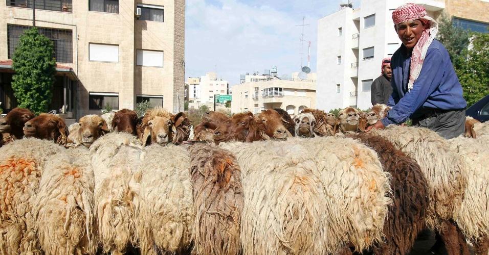 Pastor sírio refugiado cuida de seu rebanho  em Amã, na Jordânia
