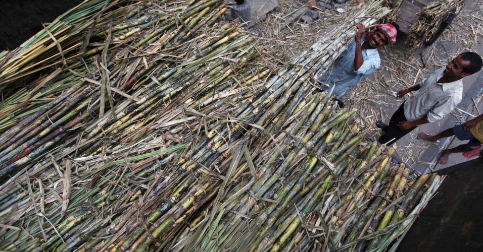 Operário descarrega caminhão de cana em mercado de Kolkata, na Índia