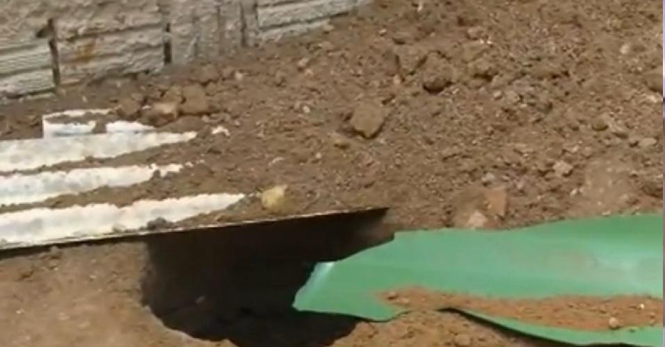 Restos mortais das vítimas de Jorge Negromonte, 50, Isabel Cristina, 51, e Bruna Cristina de Oliveira, 25, foram encontrados no quintal da casa onde o trio morava em Garanhuns (PE)