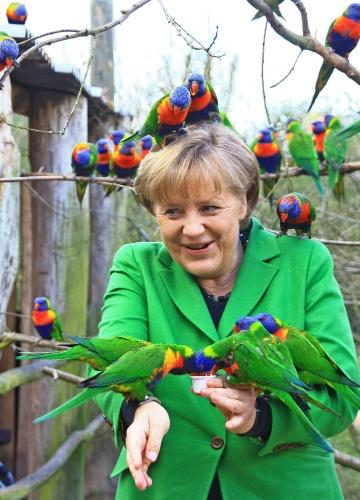 A chanceler alemã Angela Merkel brinca com araras em um parque em Marlow, no nordeste da Alemanha