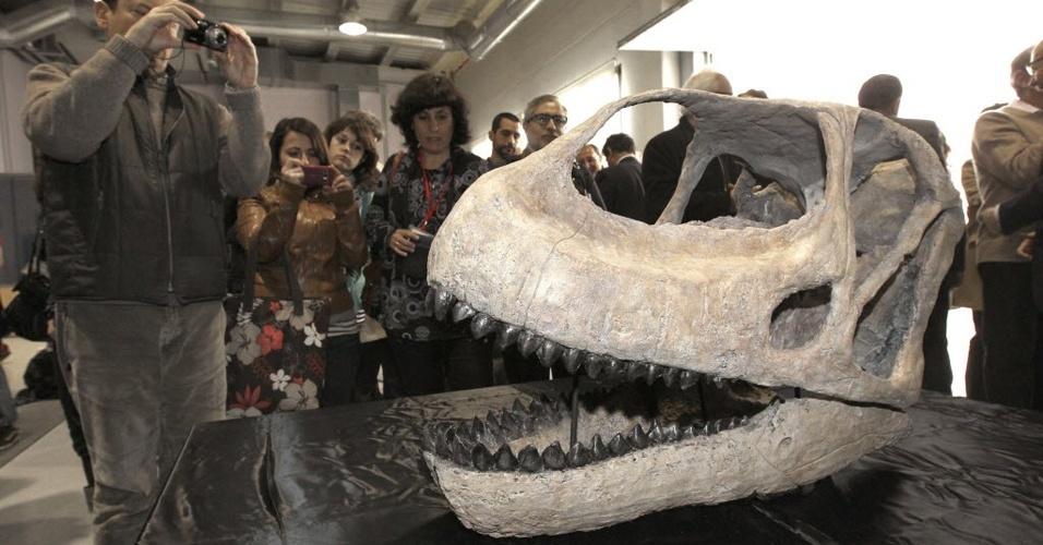 A Fundação Conjunto Paleontológico Teruel Dinopolis apresentou o crânio do dinossauro Teruel, conhecido como 'Gigante europeu'