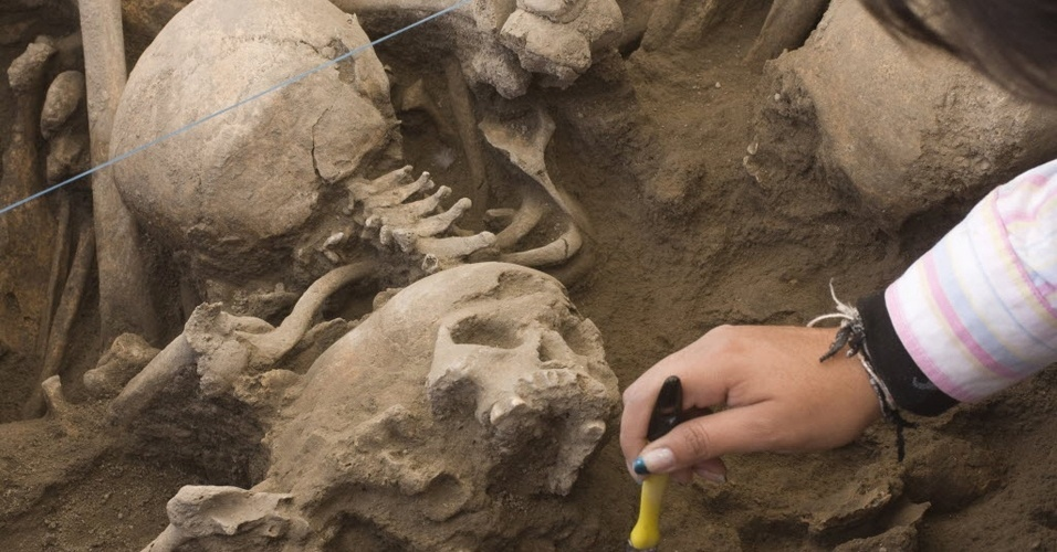 Especialista limpa fósseis encontrados no México