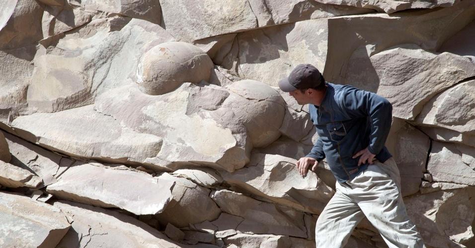 Homem observa ovos fossilizados de dinossauros na região da Chechênia, no sul da Rússia