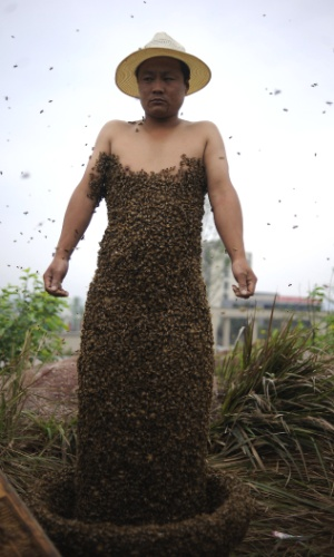Agricultor chinês se cobre de abelhas