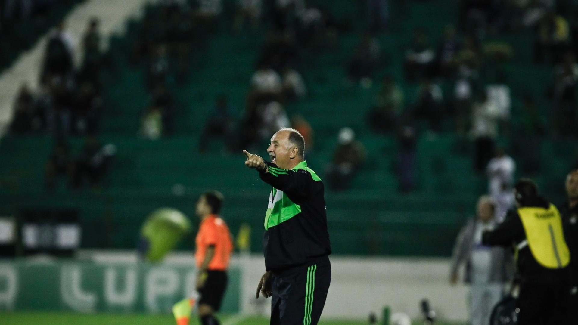 Felipão orienta o Palmeiras na lateral do campo