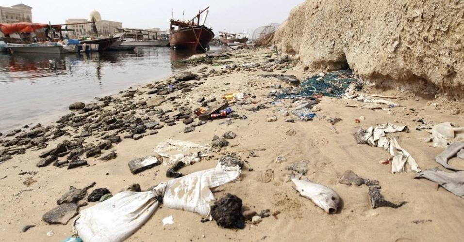 Lixo e peixes mortos são vistos em praia de Sharjah, nos Emirados Árabes Unidos. Neste domingo (22), Dia da Terra, a ONU alerta para a responsabilidade coletiva do mundo sobre os ecossistemas que proporcionam vida e sustento ao homem