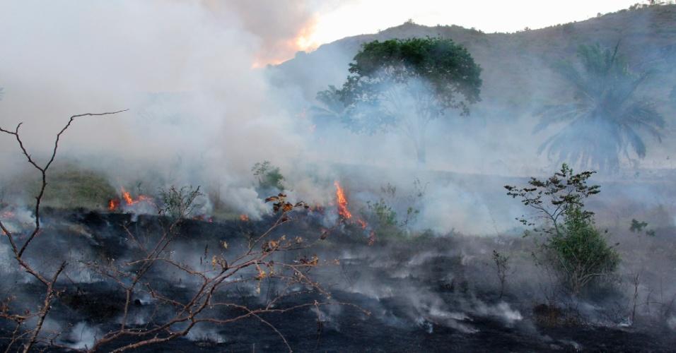 Pastagem em uma fazenda ocupada por índios é incendiada em Pau Brasil (BA)