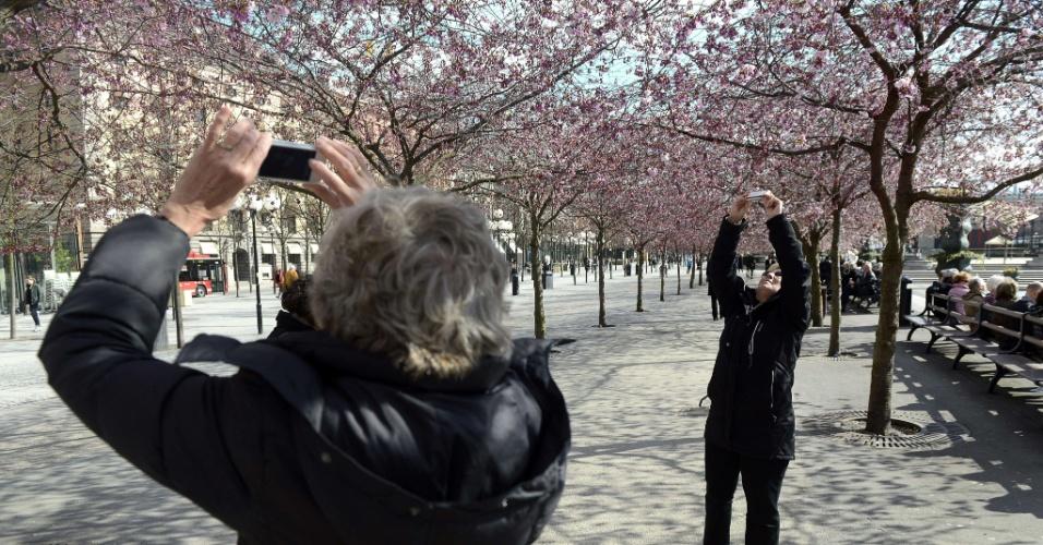 Mulheres fotografam flores de cerejeiras em Estocolmo, na Suécia