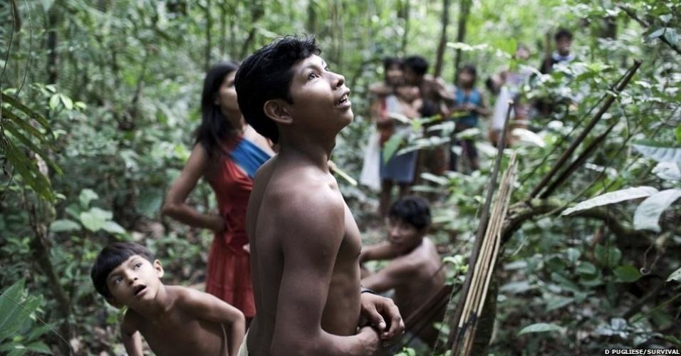 Os Awá são caçadores e coletores e viajam em grupos de cerca de 30 pessoas