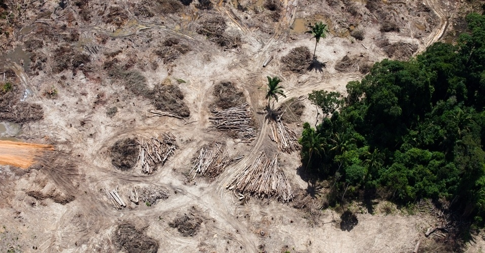 Greenpeace sobrevooa canteiros das obras de Belo Monte - 5