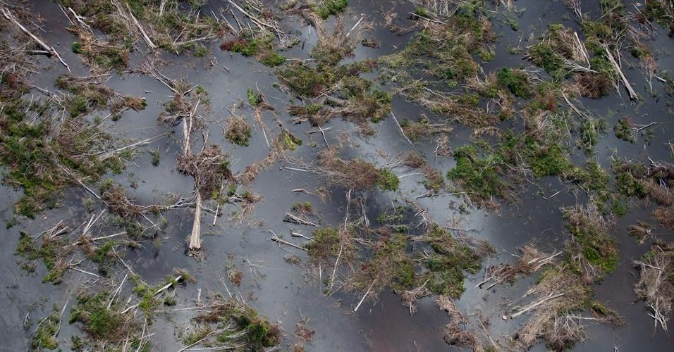 Greenpeace sobrevooa canteiros das obras de Belo Monte -6