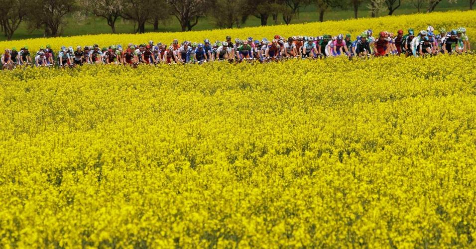 Pelotão de ciclistas durante a etapa da corrida ciclistíca do Tour de Romandie, perto de Montbeliard