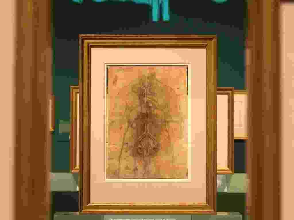 """O desenho de Leonardo da Vinci chamado """"Os principais órgãos e vasos de uma mulher"""" (30/4/12) - AP Photo/Alastair Grant"""