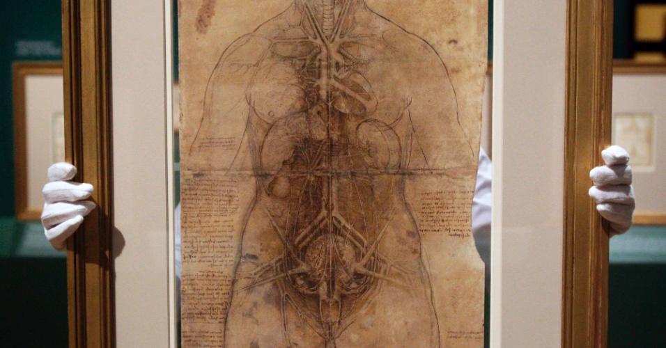 """Funcionário da Queen's Gallery, em Londres, mostra desenho de Leonardo da Vinci (1452-1519) que faz parte da mostra """"Leonardo da Vinci: anatomista"""""""