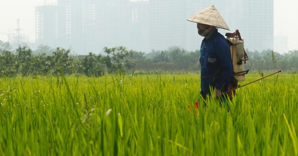 Fazendeiro volta para casa após pulverizar pesticidas em plantação de arroz no vilarejo la Tinh, no Vietnã