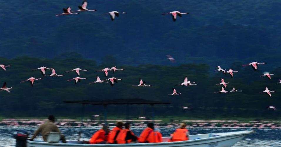 Turistas observam bando de flamingos que povoa o lago Oloidien, próximo a Naivasha, no Quênia