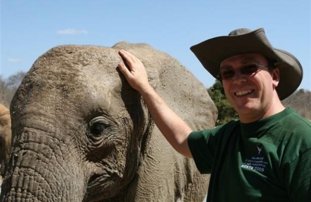 Osteopata de elefantes ajuda bebês órfãos a superar traumas