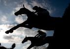 Mercado milionário dos cavalos ameaça seleção do hipismo para 2016 - Alan Crowhurst/Getty Images