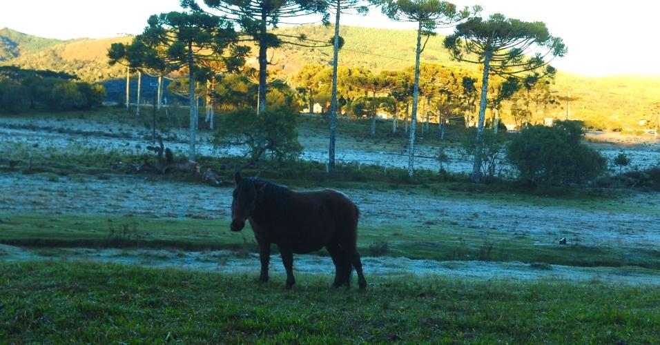13.mai.2012-Em Lages (SC), o domingo começou com frio e geada