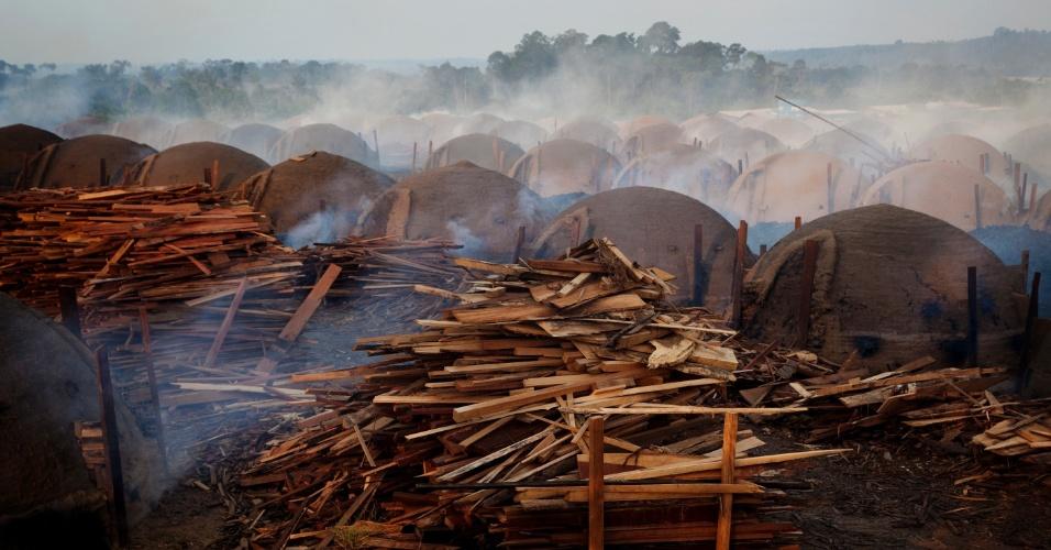 14.mai.2012 - Greenpeace denuncia extração ilegal de madeira e uso de trabalho análogo ao escravo, em carvoarias irregulares, no Maranhão e no Pará