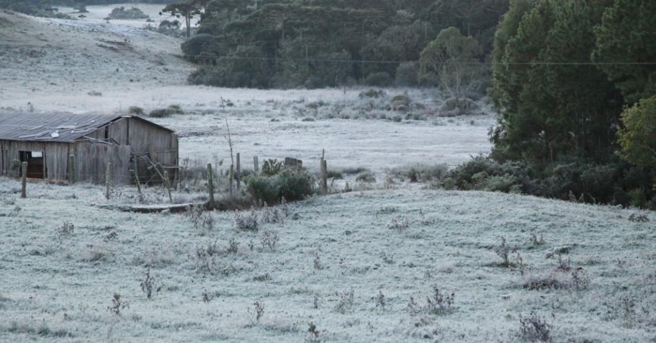 14.mai.2012 - Na madrugada desta segunda (14), os termômetros registraram temperaturas próximas de 0º C  na serra gaúcha. As mínimas chegaram a 0,3°C em Vacaria (RS) e 0,8°C em São José dos Ausentes (RS), onde o dia amanheceu com forte geada
