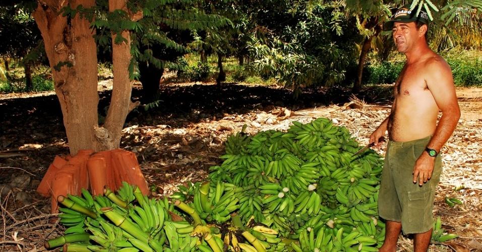 14.mai.2012 - Uma das frases que mais se ouve no Nordeste é que no sertão, se plantando tudo dá --desde que se tenha água. À distância, muitos duvidam, acham o solo infértil. Mas os projetos de irrigação provam o contrário