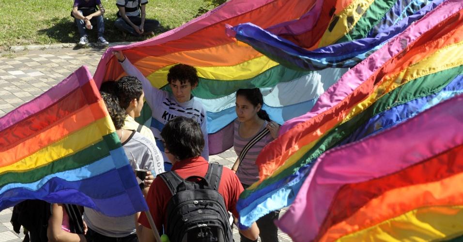 17.mai.2012 - Manifestantes com bandeiras gays na Praça de Armas, em Assunção, no Paraguai, pelo Dia Internacional Contra a Homofobia e Transfobia