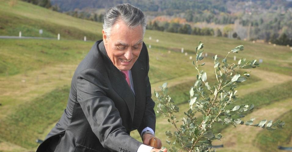 25.mai.2012 - O presidente português, Aníbal Cavaco Silva, planta um sobreiro durante cerimônia de plantio de árvores no Arboredo Nacional, em Camberra, na Austrália