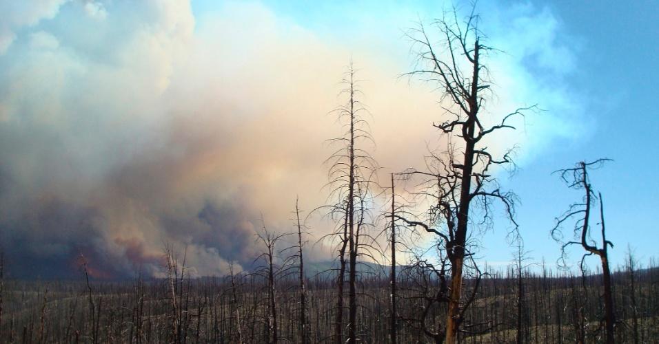 Fumaça cobre região onde aconteceram incêndios florestais no estado do Novo México, nos Estados Unidos. A foto, divulgada hoje (27), é da última quinta-feira (24)