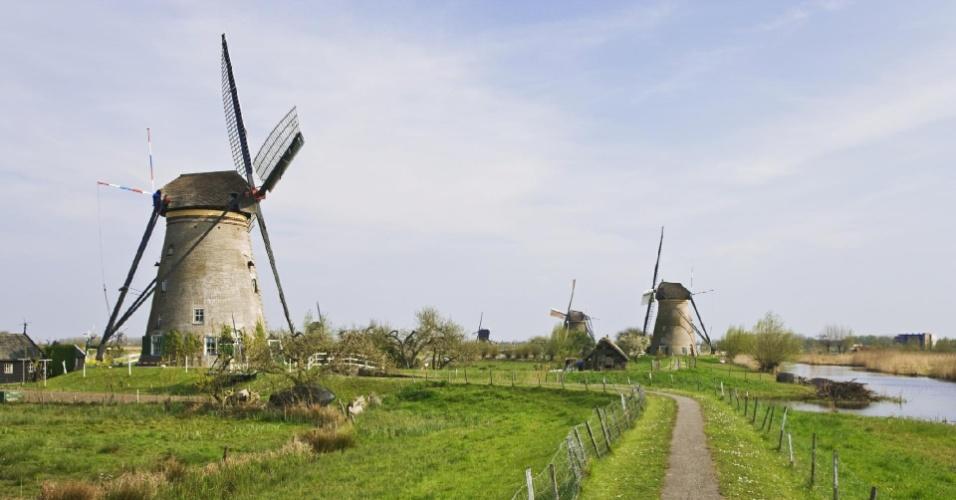Fazendas de leite - Roterdã - Holanda