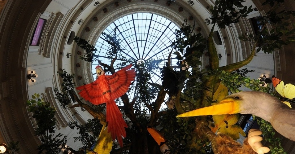 04.jun.2012 - Instalação representa a Floresta Amazônica na exposição ?Amazônia ? Ciclos da Modernidade?, em cartaz no Centro Cultural Banco do Brasil, no Rio de Janeiro. Cerca de 300 mapas antigos, fotos, pinturas esculturas e instalações artísticas mostram a riqueza e diversidade do bioma