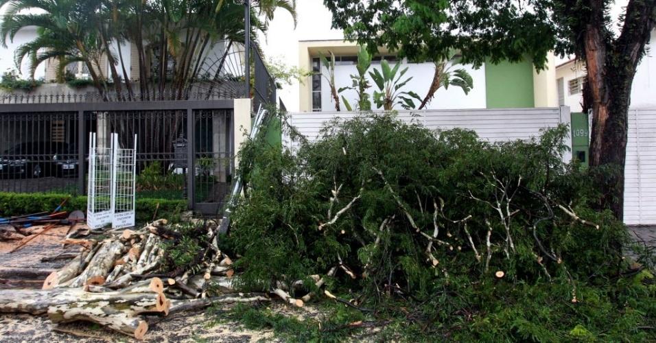 05.jun.2012 - Árvore caída na rua Harmonia, zona oeste de São Paulo, foi cortada por funcionários da Prefeitura para remoção. Pelo menos 26 árvores amanheceram o dia quebradas nesta terça-feira (5) em decorrência da forte chuva que caiu na cidade desde a noite de segunda-feira (4)