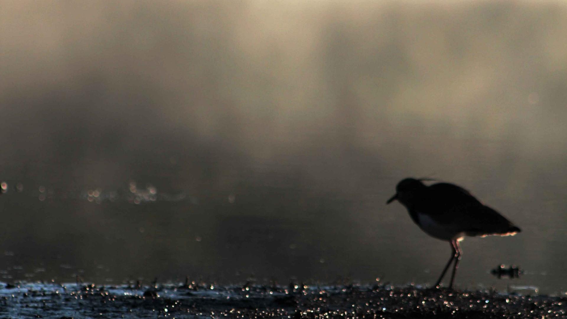 6.jun.2012 - Frio na cidade de Viamão, região metropolitana de Porto Alegre