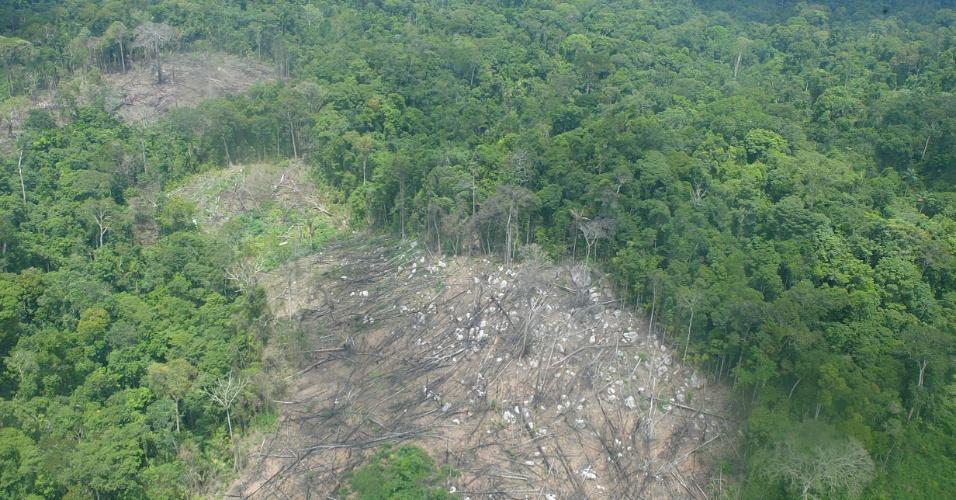 fev.2005 - Floresta derrubada em Anapu, no Pará