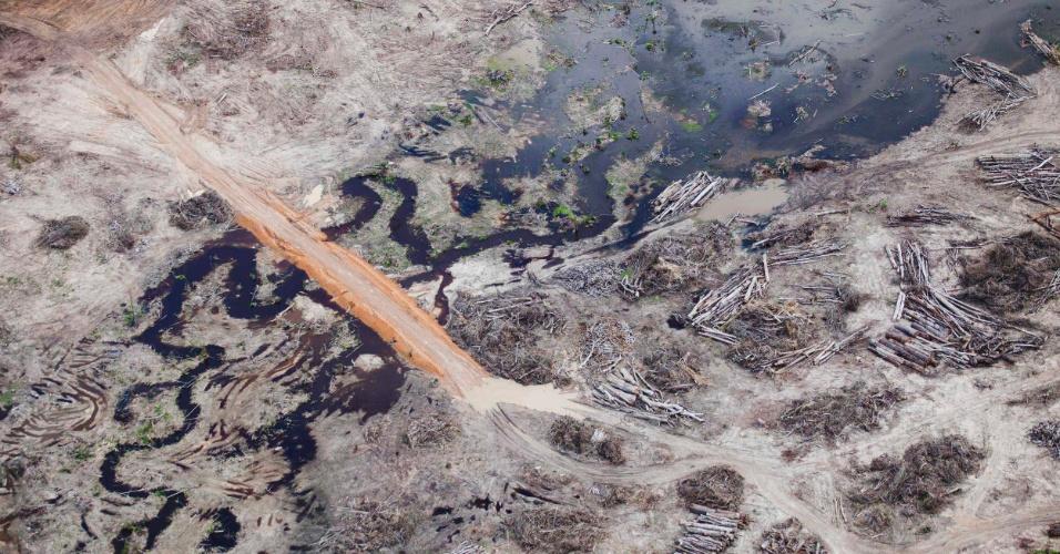fev.2012 - Segundo o Greenpeace, a usina de Belo Monte vai aumentar consideravelmente o desmatamento na região de Altamira