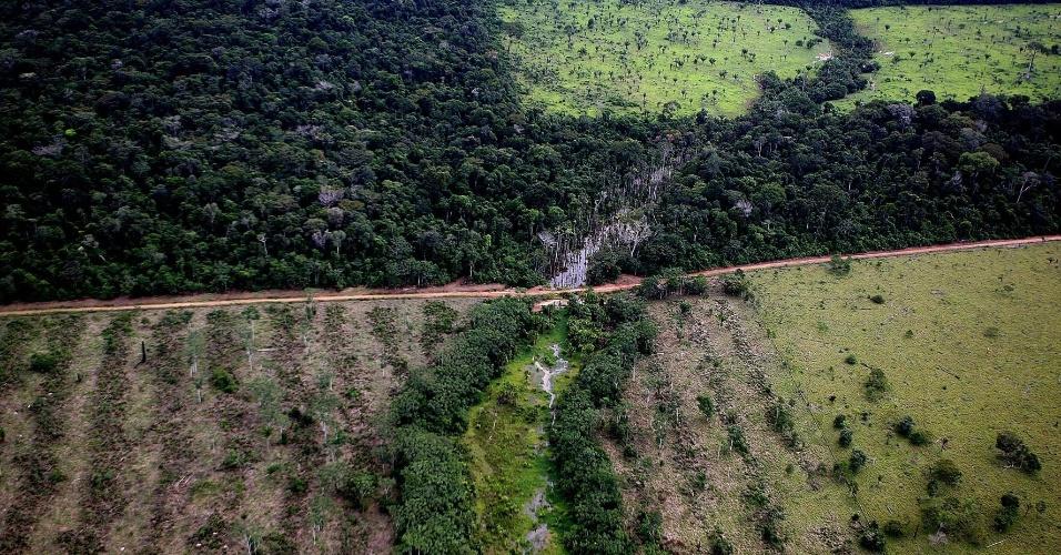 jan.2008 - Área florestal que foi desmatada em Alta Floresta, no extremo norte do Estado do Mato Grosso