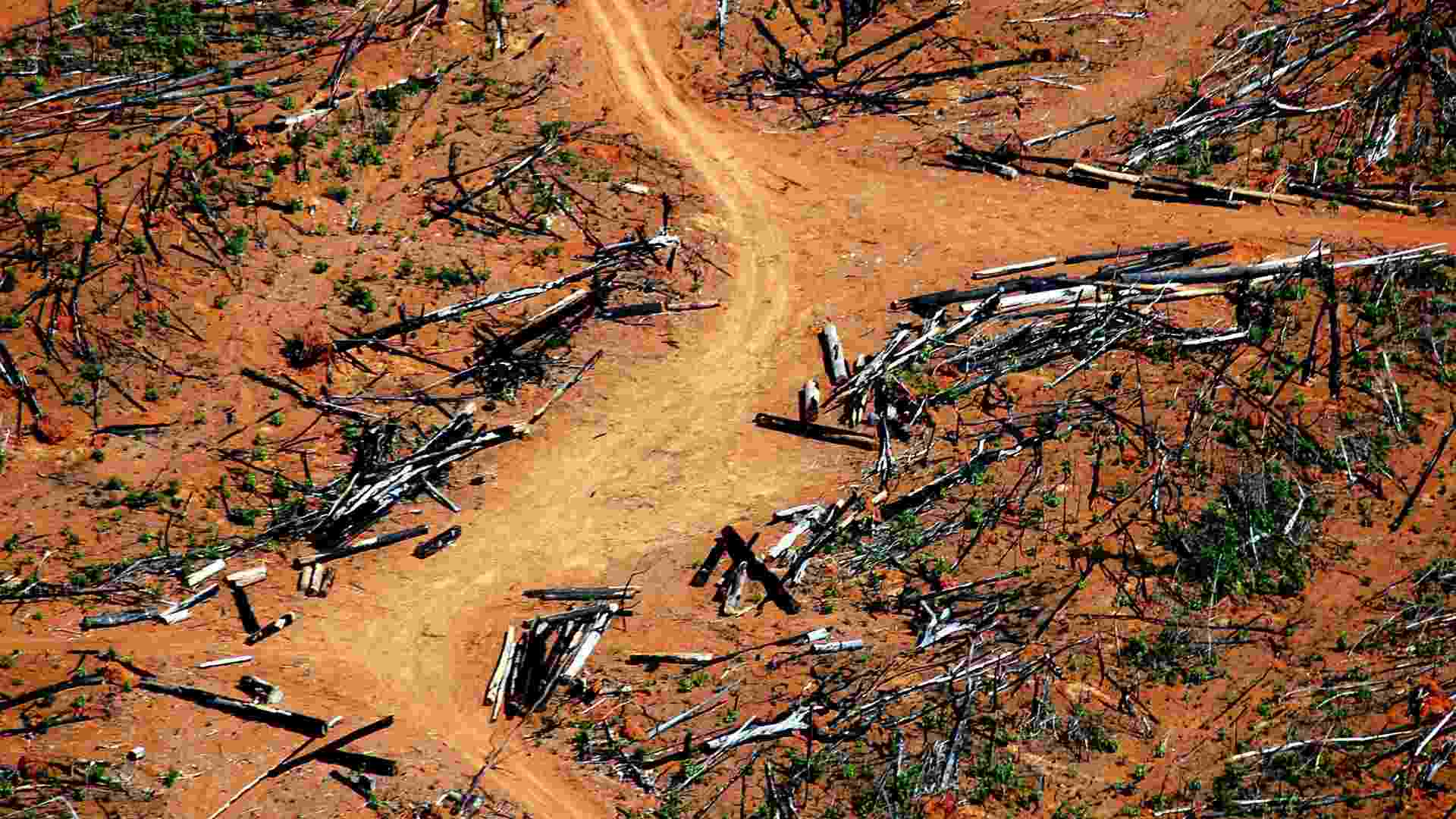 jun.2005 - Vista aérea de área de preservação permanente com enorme parte desmatada em Nova Ubiratã, região médio-norte de Mato Grosso - Fernando Donasci/Folhapress