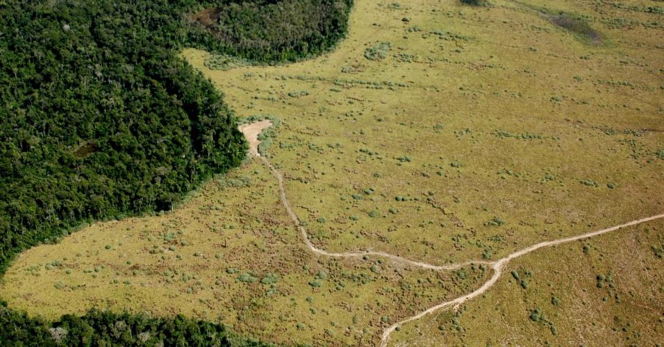 jun.2005 - Vista aérea de área de preservação permanente com enorme parte desmatada em Nova Ubiratã, região médio-norte de Mato Grosso