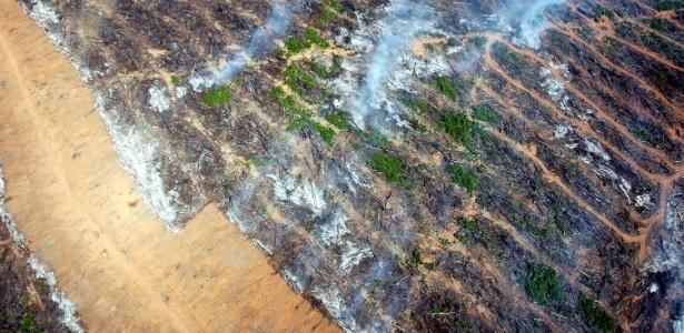 Vista aérea de área queimada em Nova Ubirata, região do meio norte de Mato Grosso, uma das cidades que mais desmatam - Fernando Donasci/Folhapress
