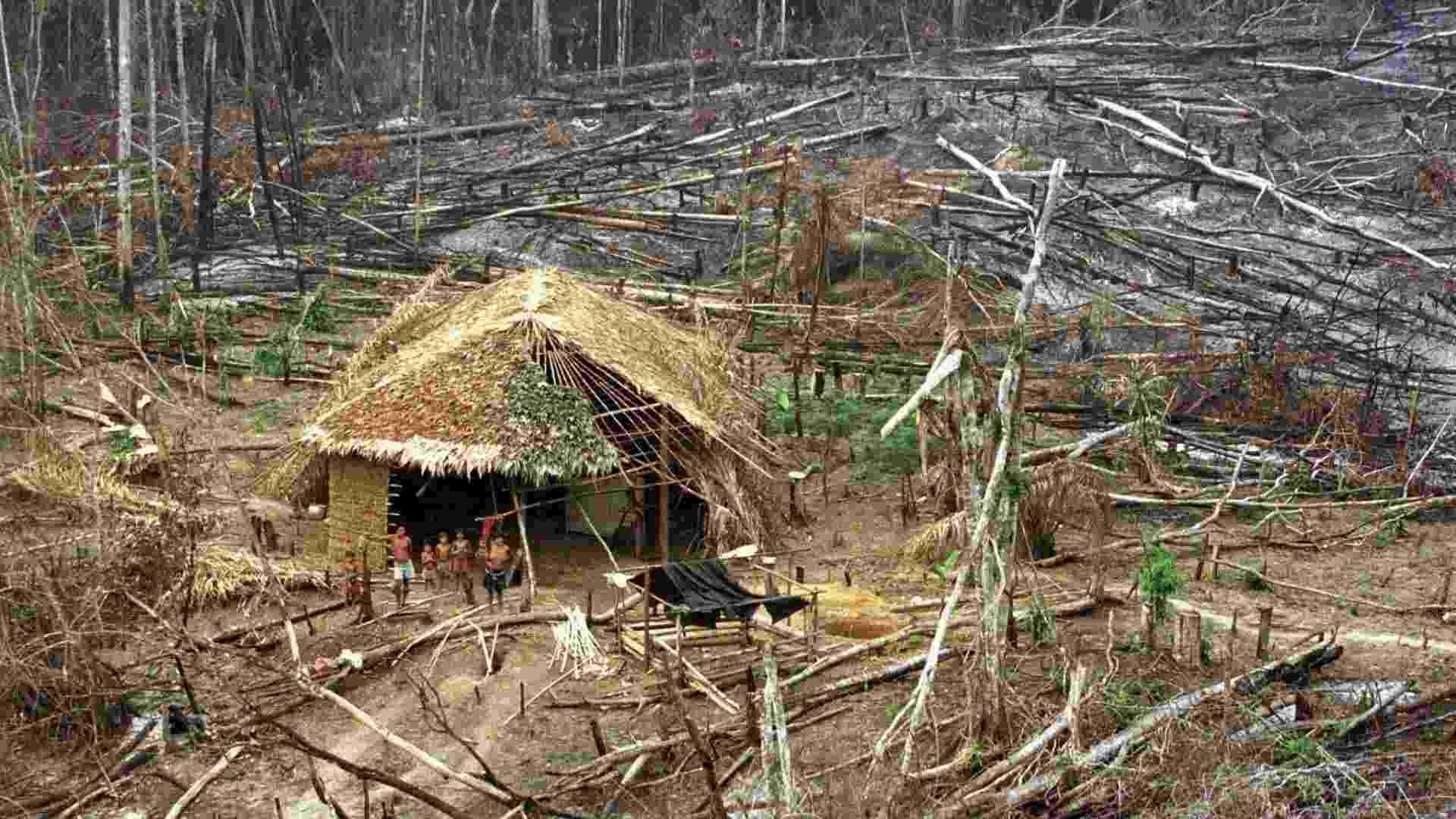 mar.1998 - Índios em área de floresta destruída em Roraima - Reuters/Gregg Newton