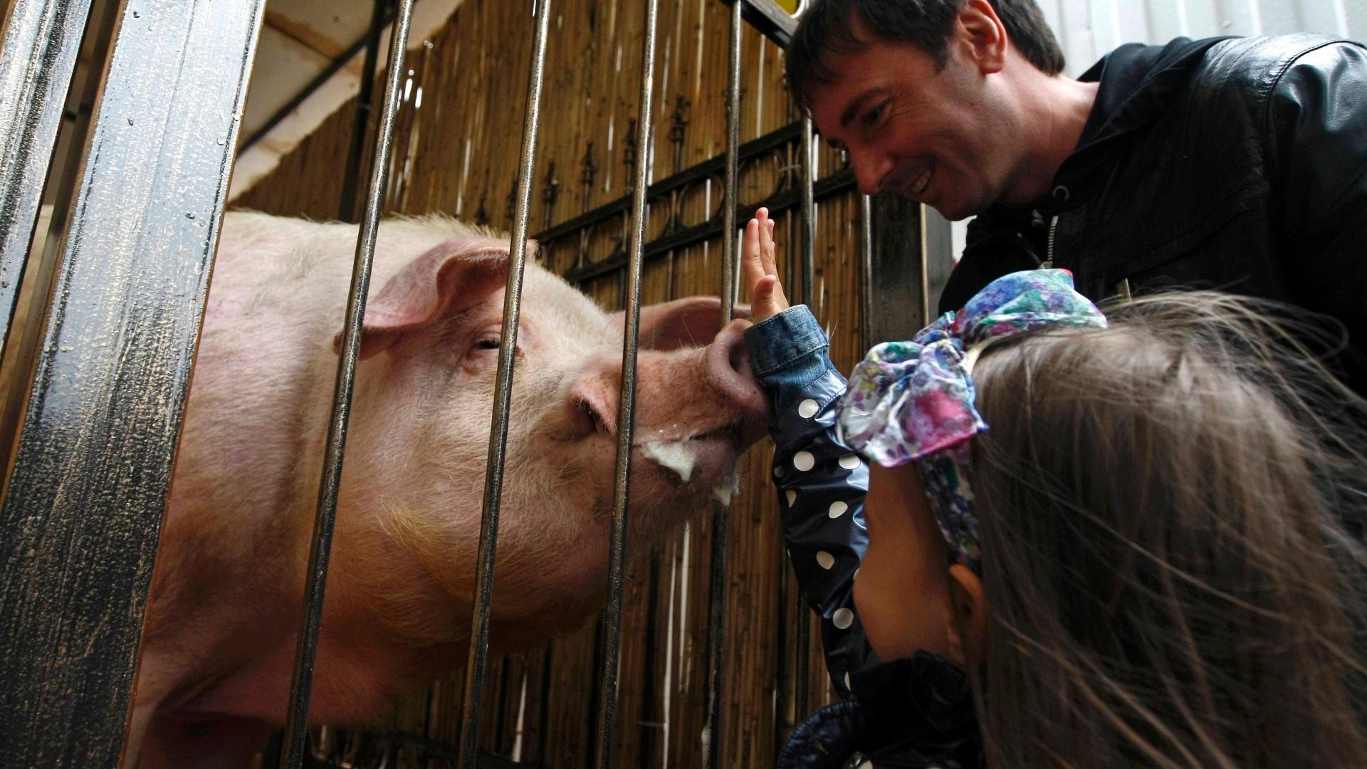 Funtik, bastante querido em Kiev, conta com o apoio do governo local para ser uma das atrações da Ucrânia, que sedia a Eurocopa junto com a Polônia. A cidade pretende fazer um grande evento em cada uma das previsões do porco.
