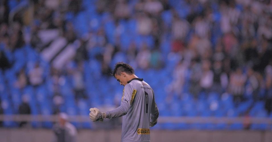 Milton Raphael, goleiro do Botafogo, festeja o gol da equipe na partida contra o Cruzeiro, no Engenhão