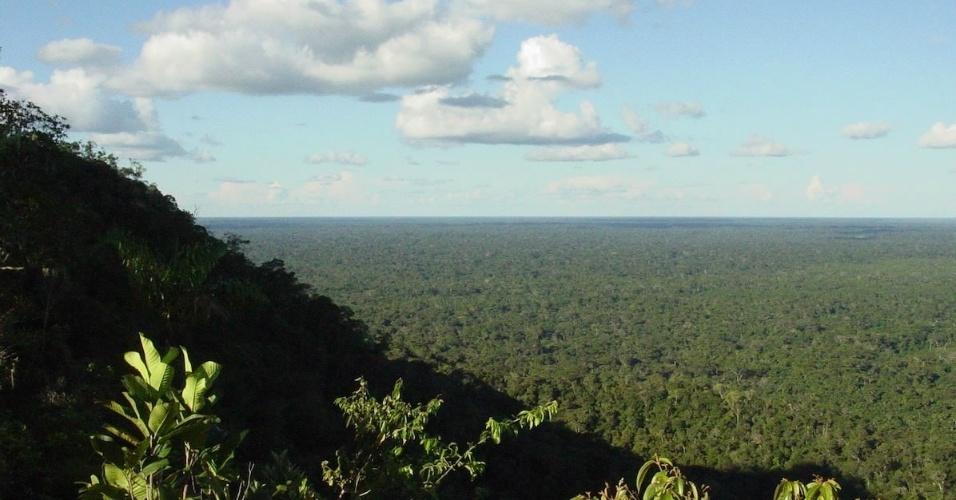 Parque Nacional do Divisor, localizado nos municípios de Rodrigues Alves, Porto Walter, Marechal Thaumaturgo, Mâncio Lima e Cruzeiro do Sul, no Acre
